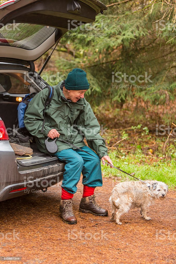 Orienteering Active Senior Man After Bushwalking in an English Forest stock photo
