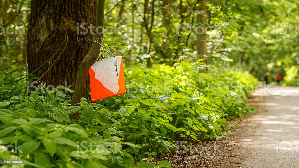 Orienteering check Point stock photo