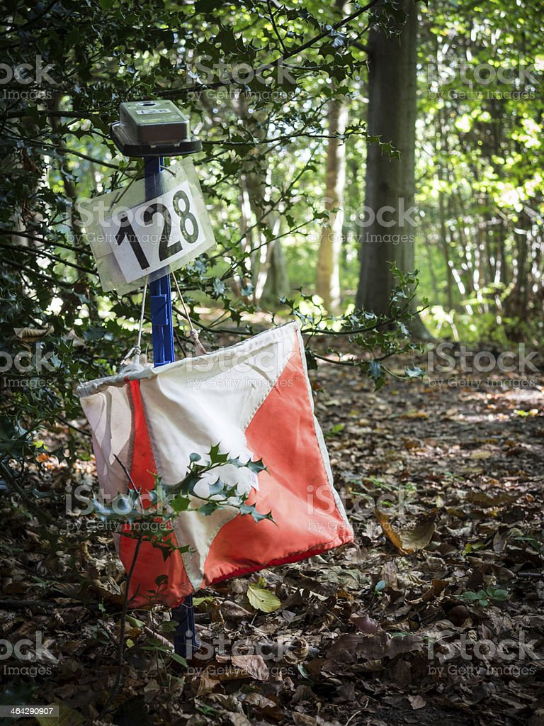 Orienteering Equipment in the Forest stock photo