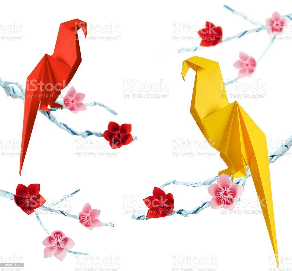 Origami parrots royalty-free stock photo