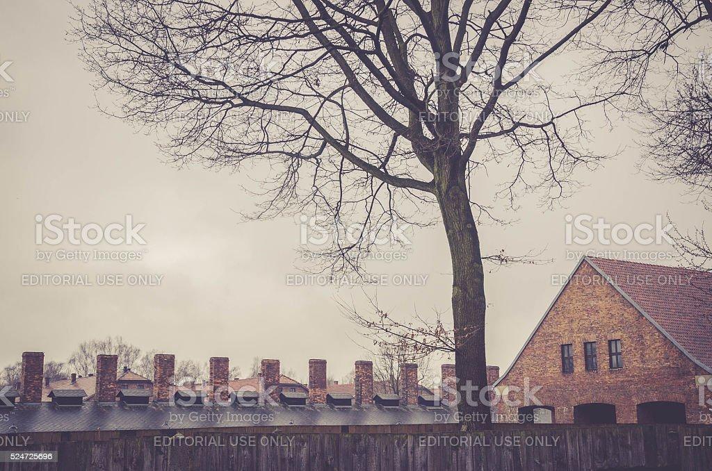 Original brick barracks and chimneys of gas chambers stock photo
