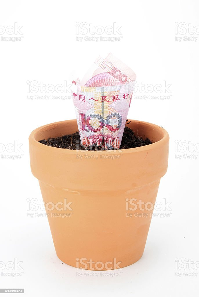 originality Flower pot royalty-free stock photo