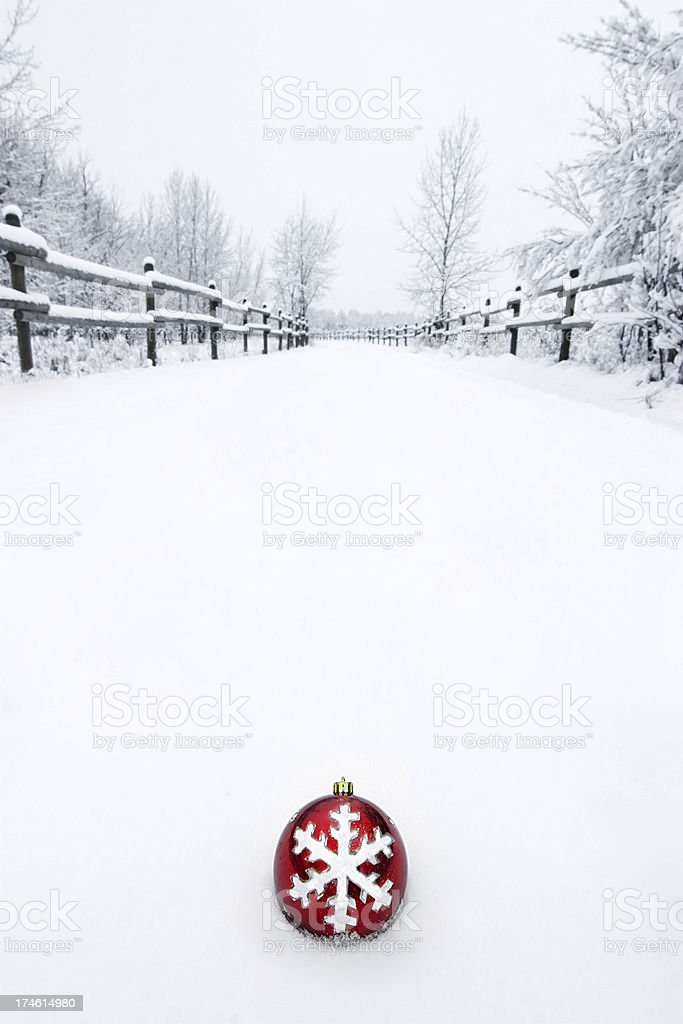 Ornament in the snow royalty-free stock photo