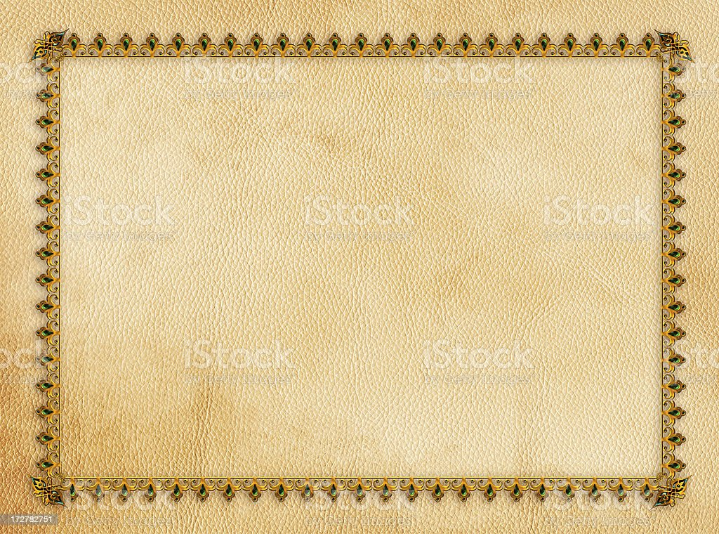 Ornament skin frame royalty-free stock photo