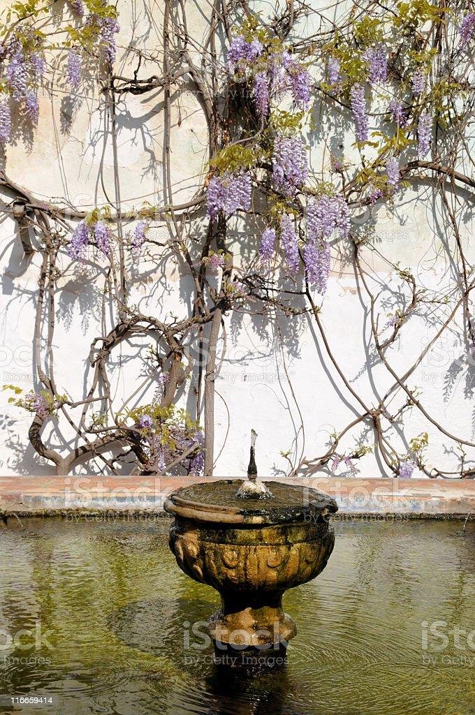 Ornamental fountain royalty-free stock photo
