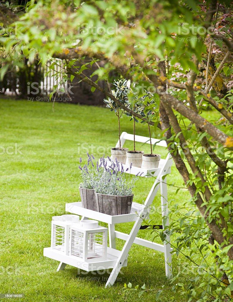 Ornamental Garden royalty-free stock photo