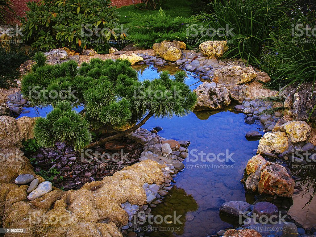 Ornamental Garden. Pond. stock photo