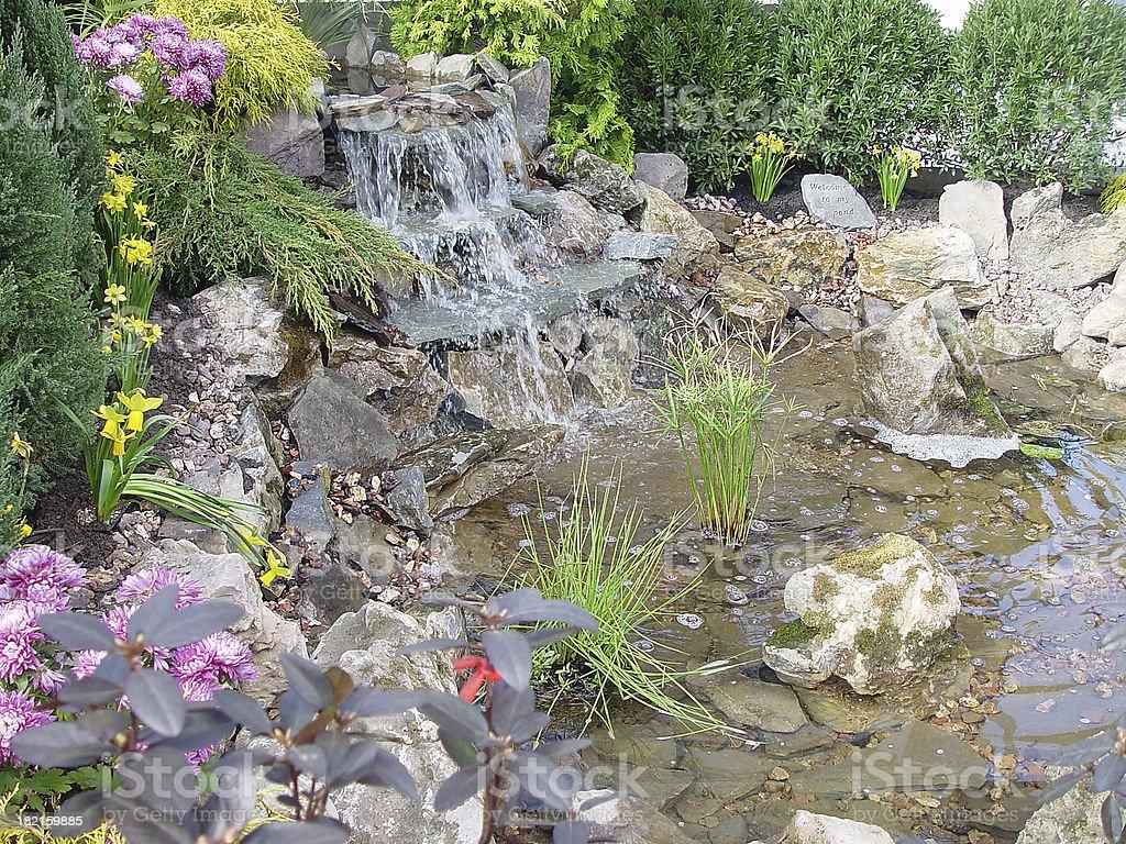 Ornamental Pond royalty-free stock photo