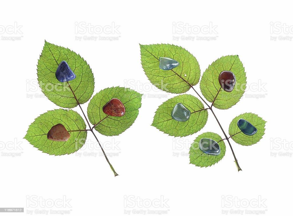 Ornamental Stones On Rose Leaves stock photo