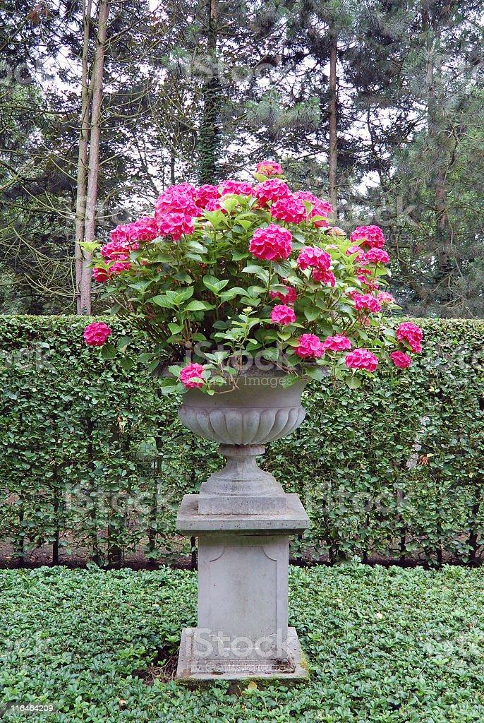 Ornamental vase royalty-free stock photo
