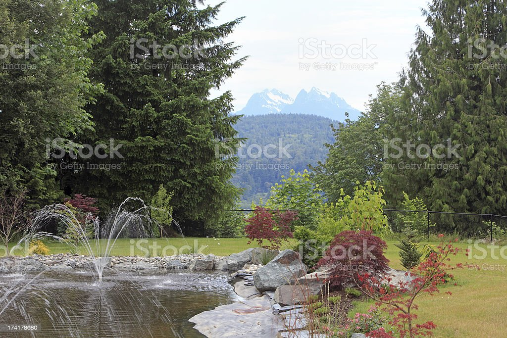 Ornamental West Coast Garden With Mountain View royalty-free stock photo