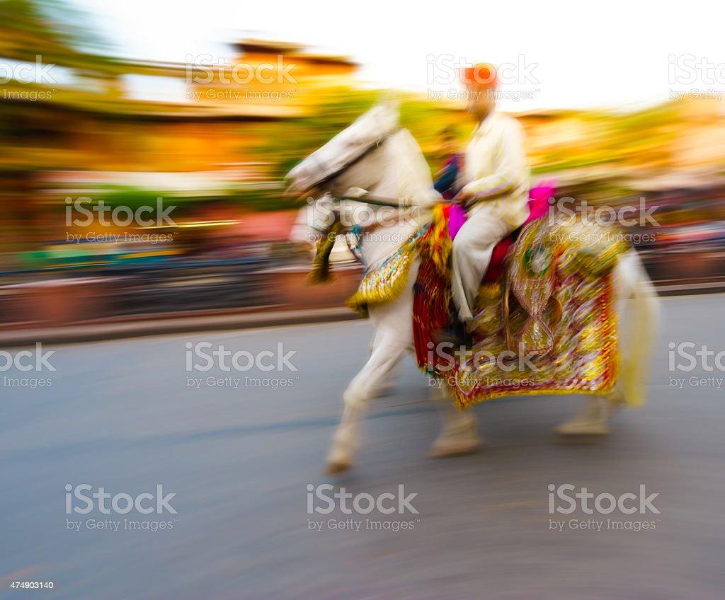 Ornated white indian horse stock photo