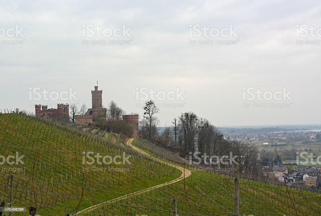 Ortenberg vineyards stock photo
