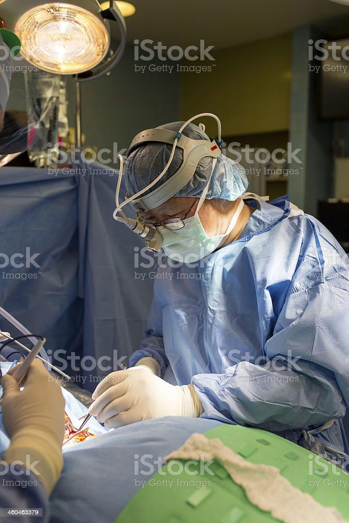 orthopaedic operation stock photo