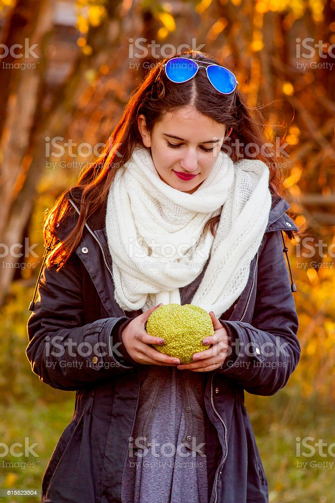 Osage orange in teenage girl hands stock photo