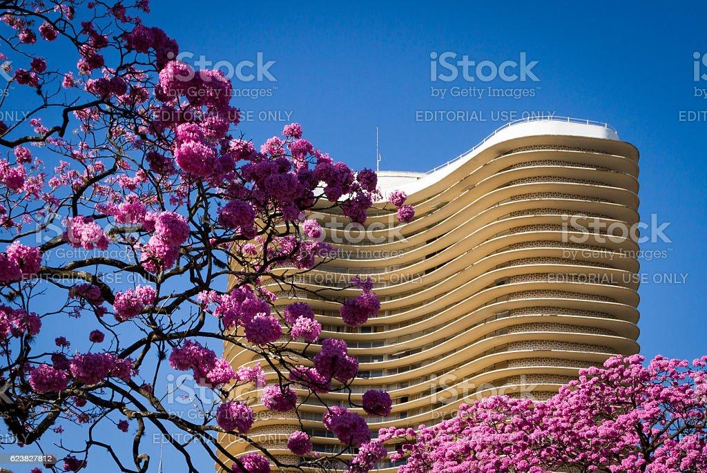 Oscar Niemeyer building, Belo Horizonte city, Brazil stock photo