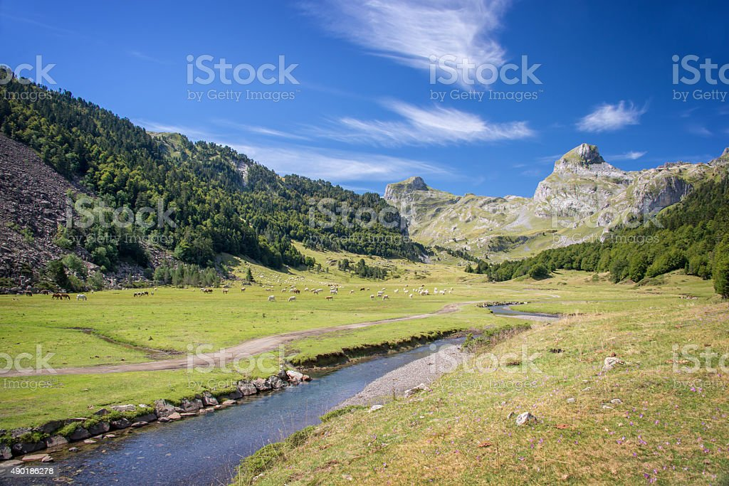 Ossau Valley in the Pyrenees, France stock photo