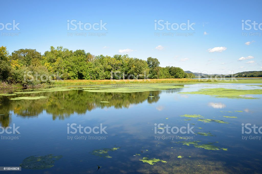 Ossekeag Creek Hampton New Brunswick Canada (late Summer) stock photo