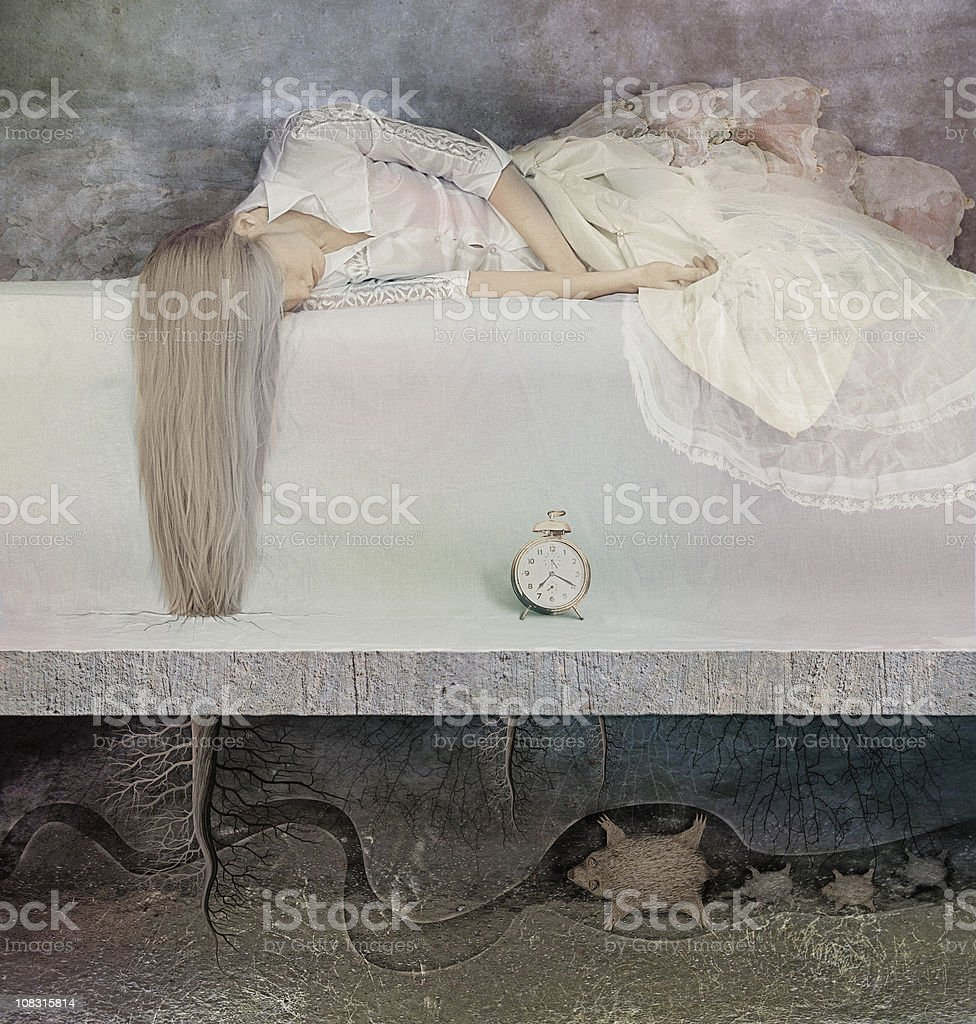 other reality royalty-free stock photo