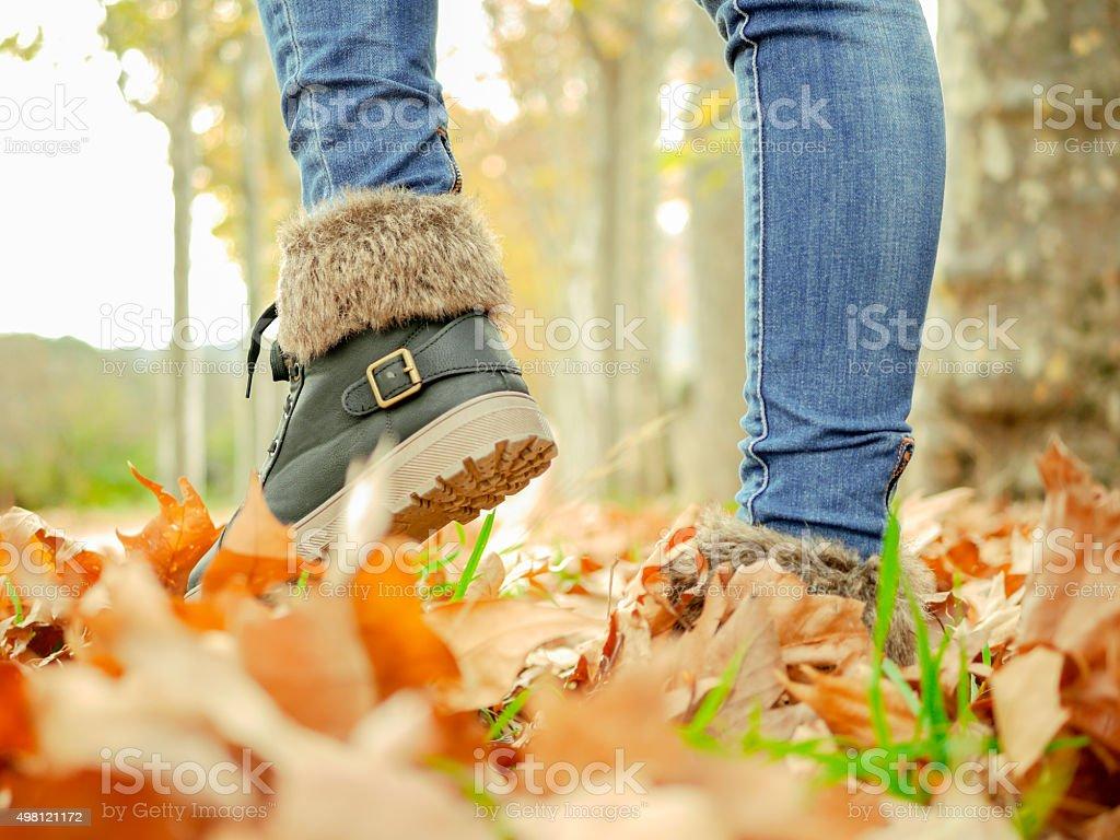 otoño stock photo
