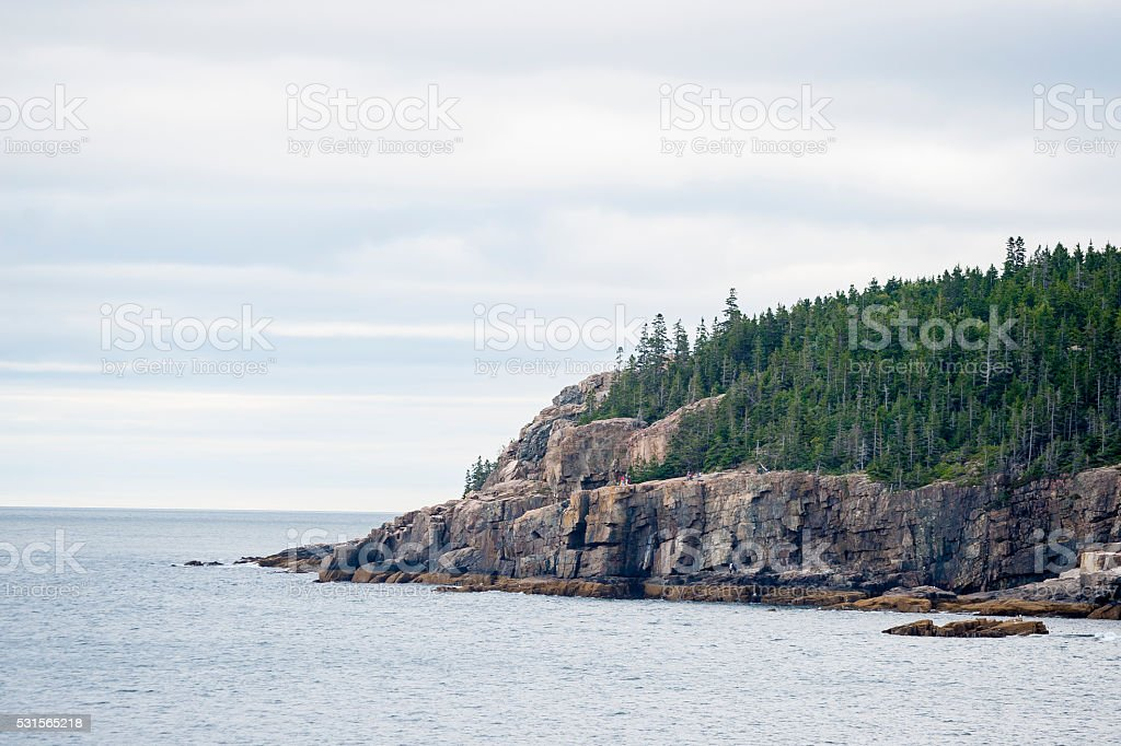 Otter Cliff in Acadia National Park stock photo