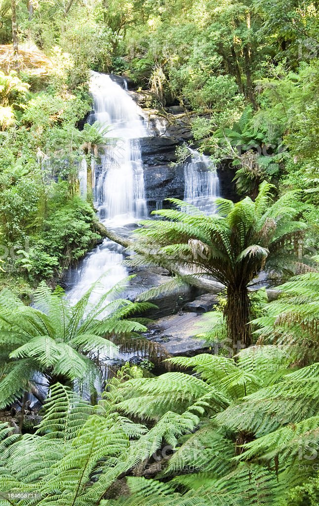 Otway Ranges stock photo