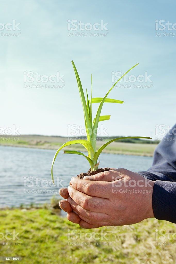 Our Earth royalty-free stock photo