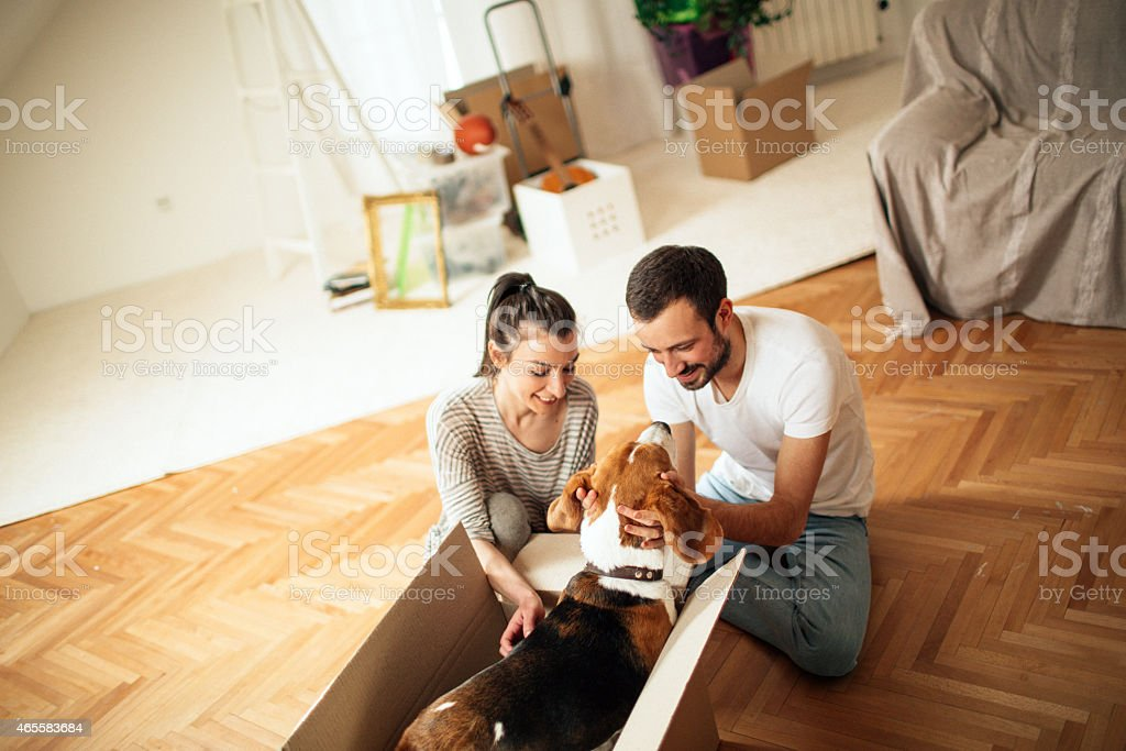 Our love and new beginning stock photo
