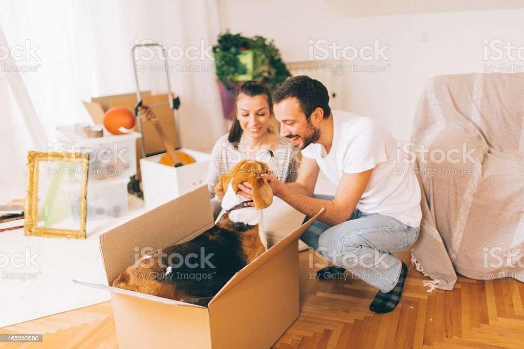 Our new beginning stock photo