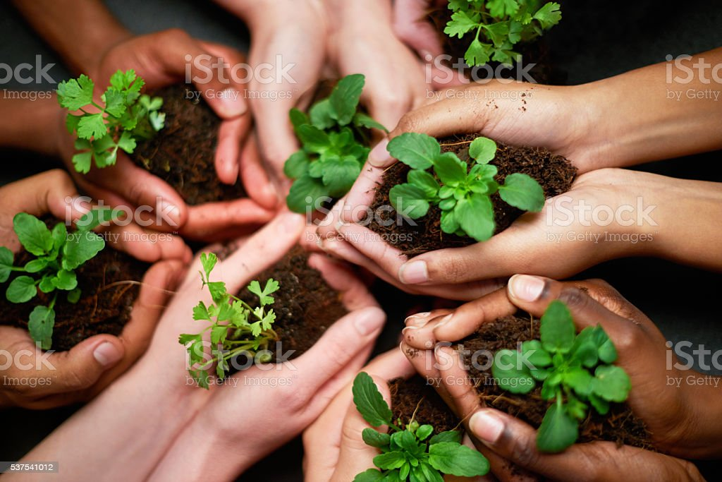 Our precious earth stock photo