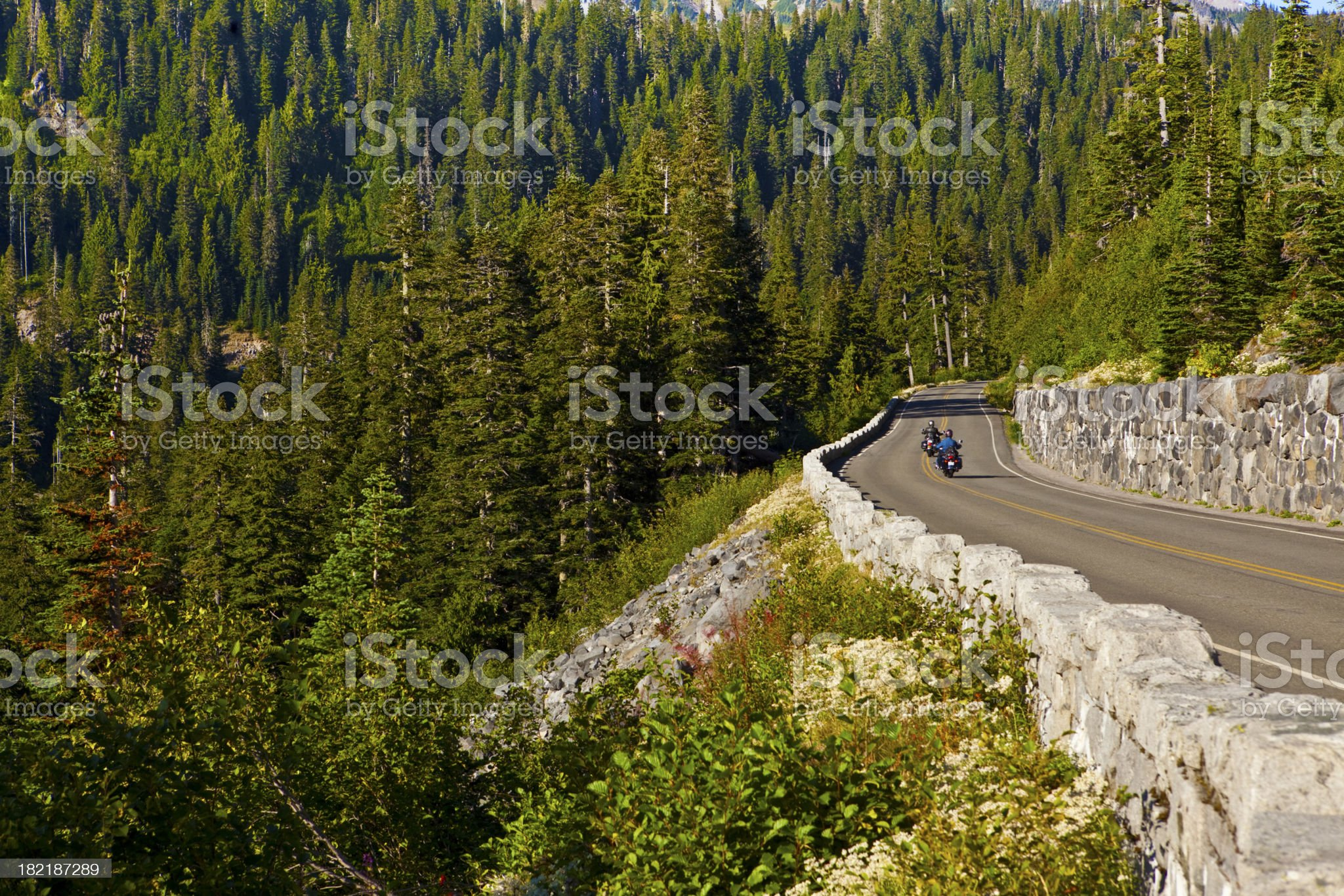 out for a ride royalty-free stock photo