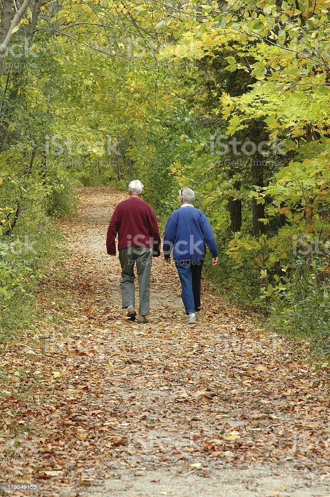 Out for a Walk in the Woods royalty-free stock photo
