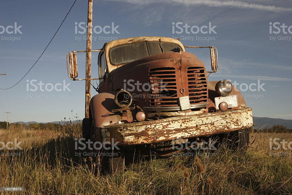 Out to Pasture royalty-free stock photo