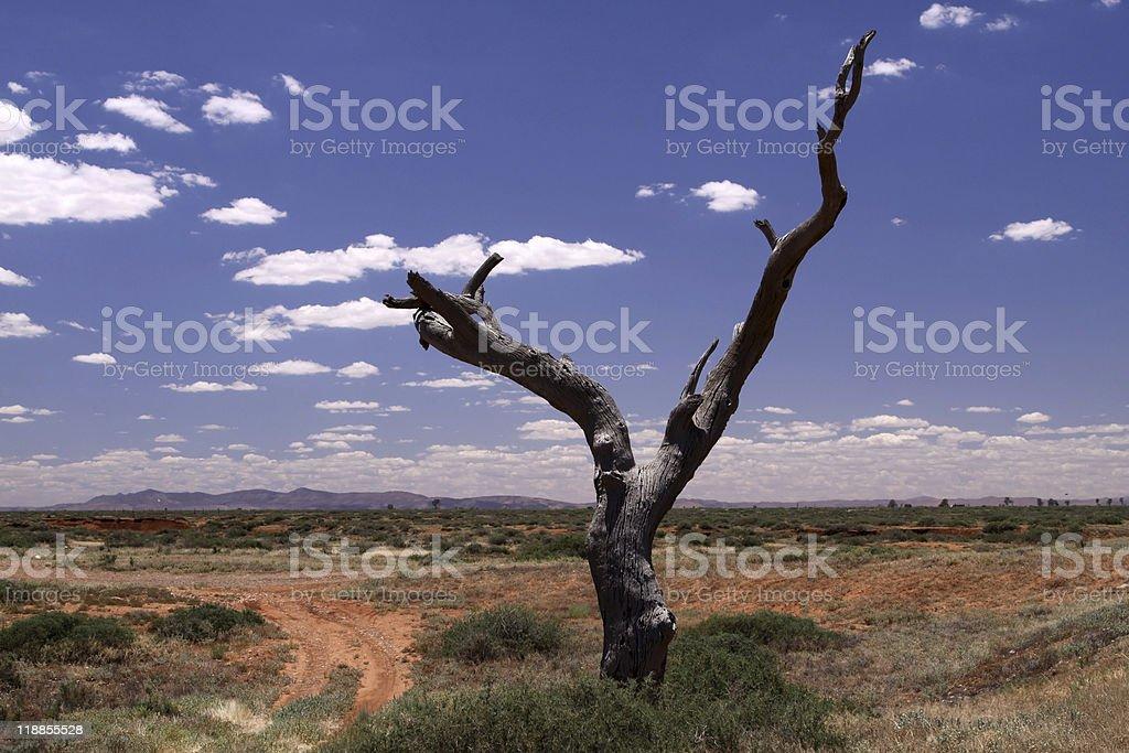 Outback. Australia royalty-free stock photo
