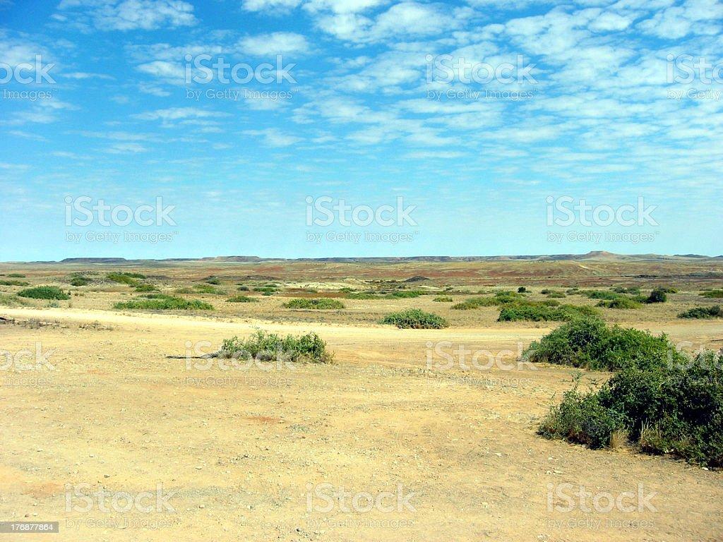 Outback Desert Plain royalty-free stock photo