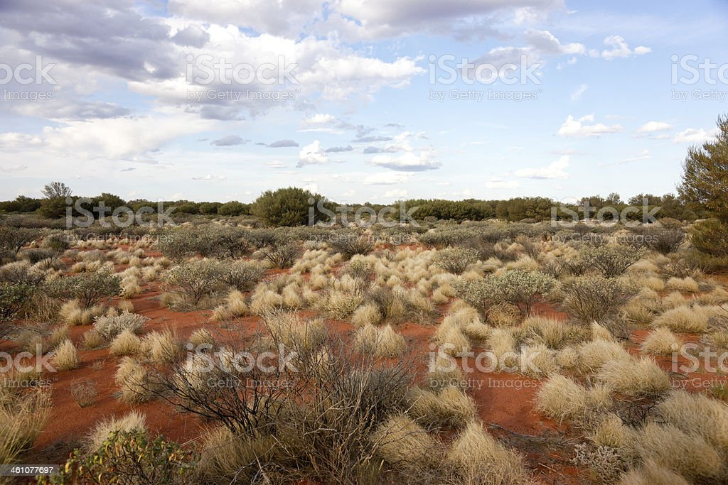 Outback in Northern Territory, Australia stock photo