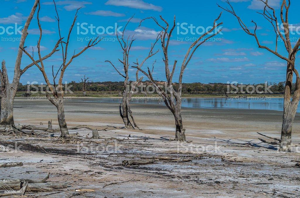 Outback Lagoon 2 stock photo