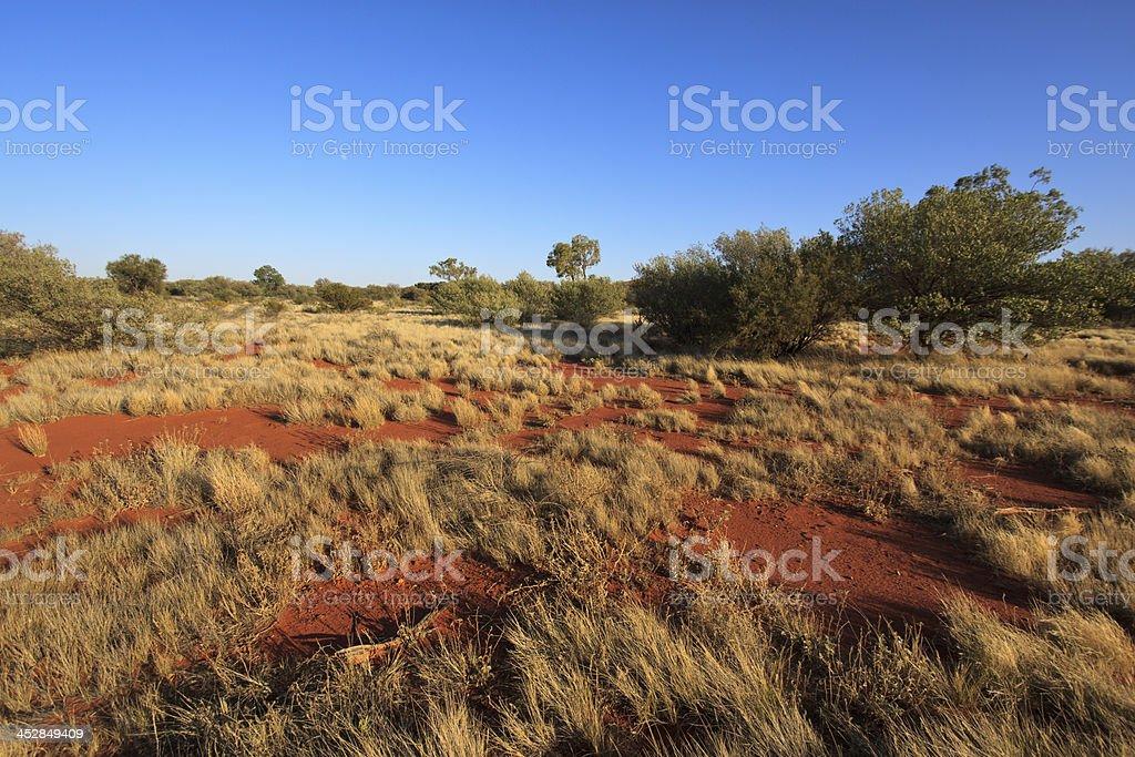 Outback Landscape - Australia stock photo