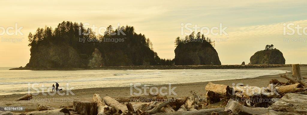 Outcroppings , La Push , Washington , USA . stock photo