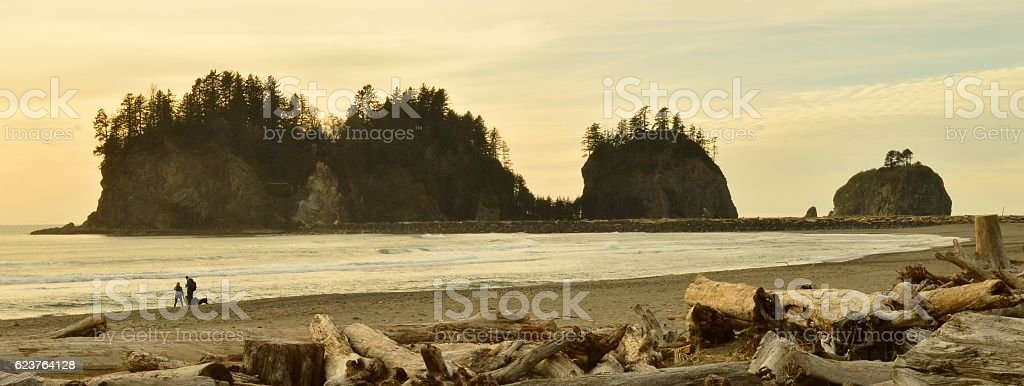 Outcroppings , La Push , Washington , USA . stock photo