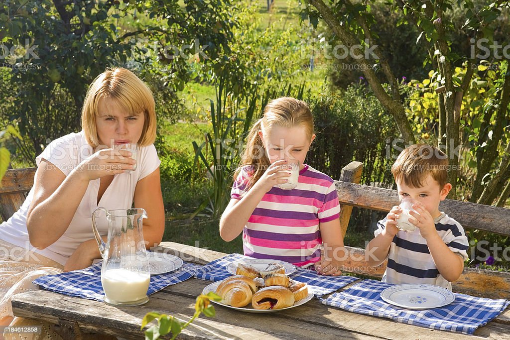 Outdoor Breakfast royalty-free stock photo