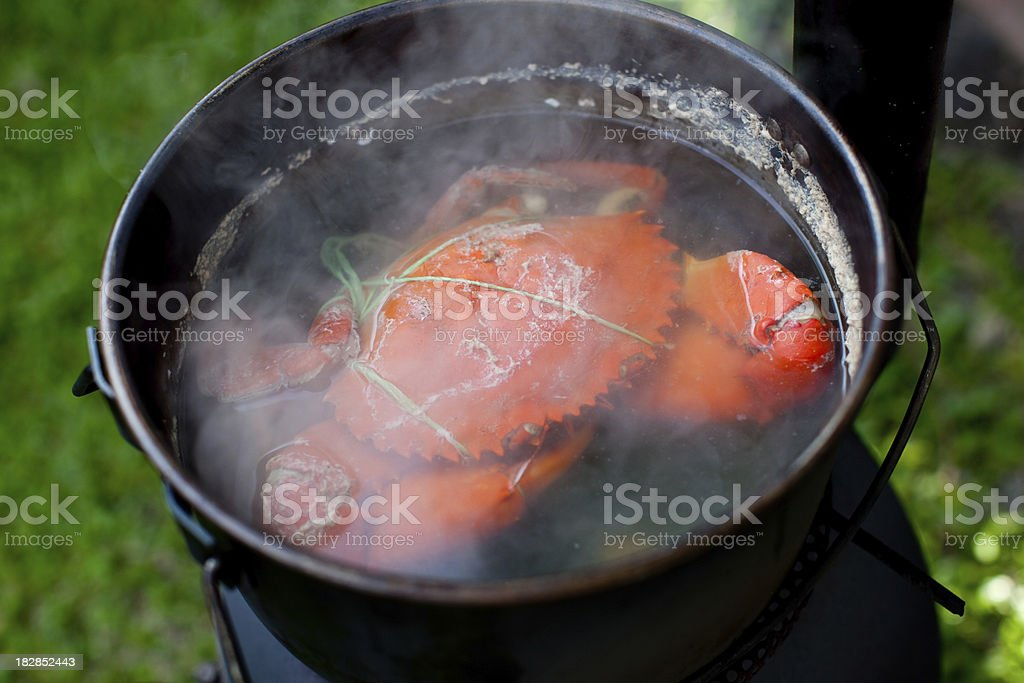 Outdoor camping cooking - Mud Crab in a Pot stock photo