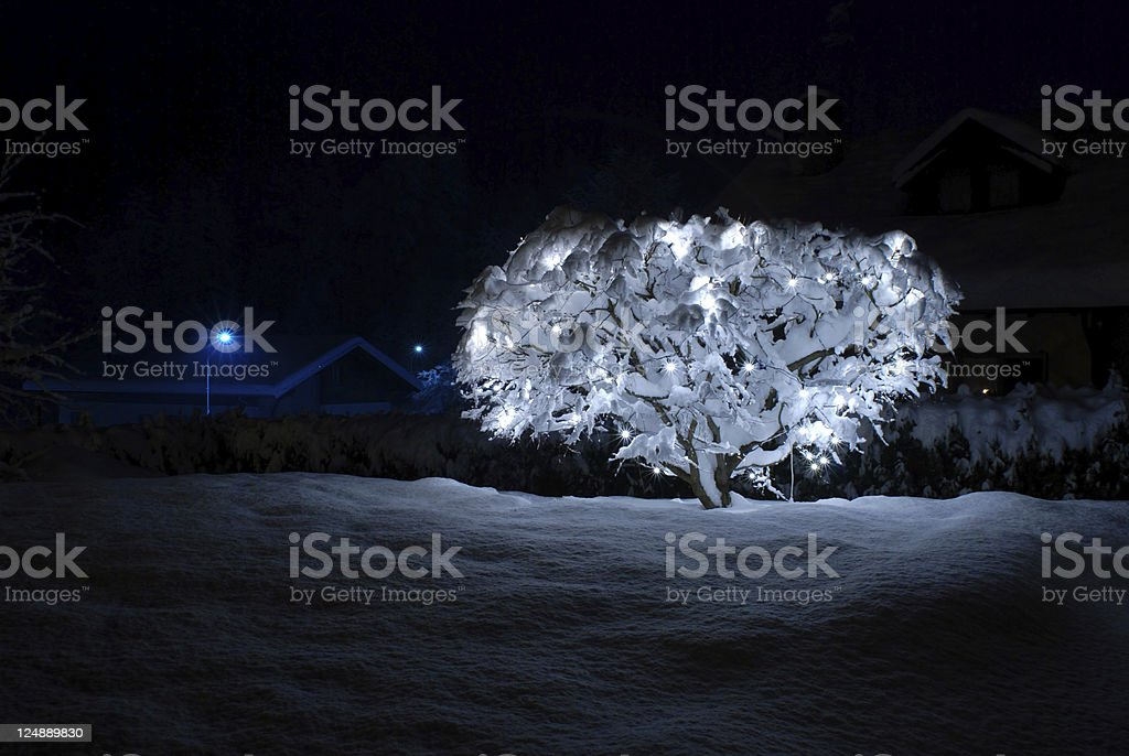 Outdoor Christmas tree royalty-free stock photo