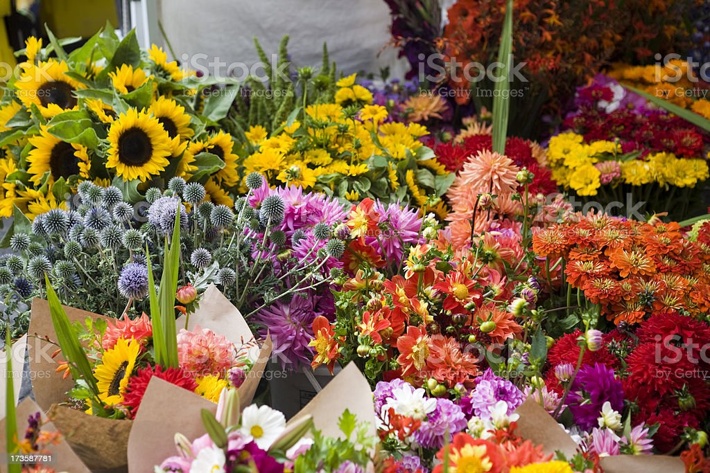 Outdoor fresh flowers at farmers street market royalty-free stock photo
