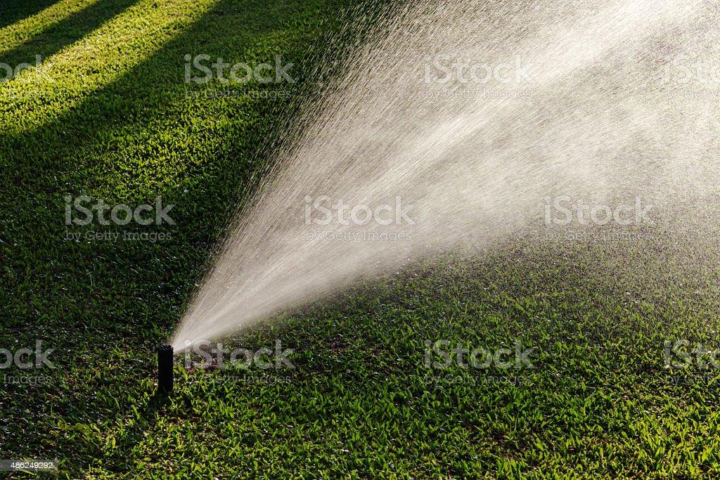 Outdoor garden lawn maintenance sprinkler watering system stock photo