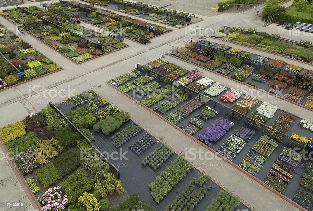 Outdoor Garden Nursery stock photo