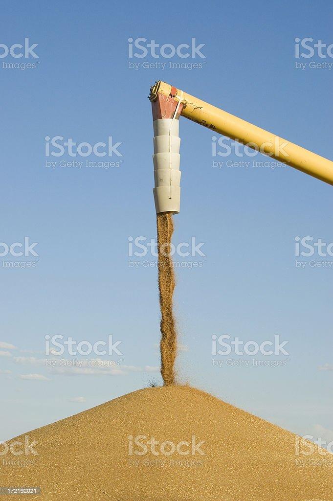 Outdoor grain storage stock photo