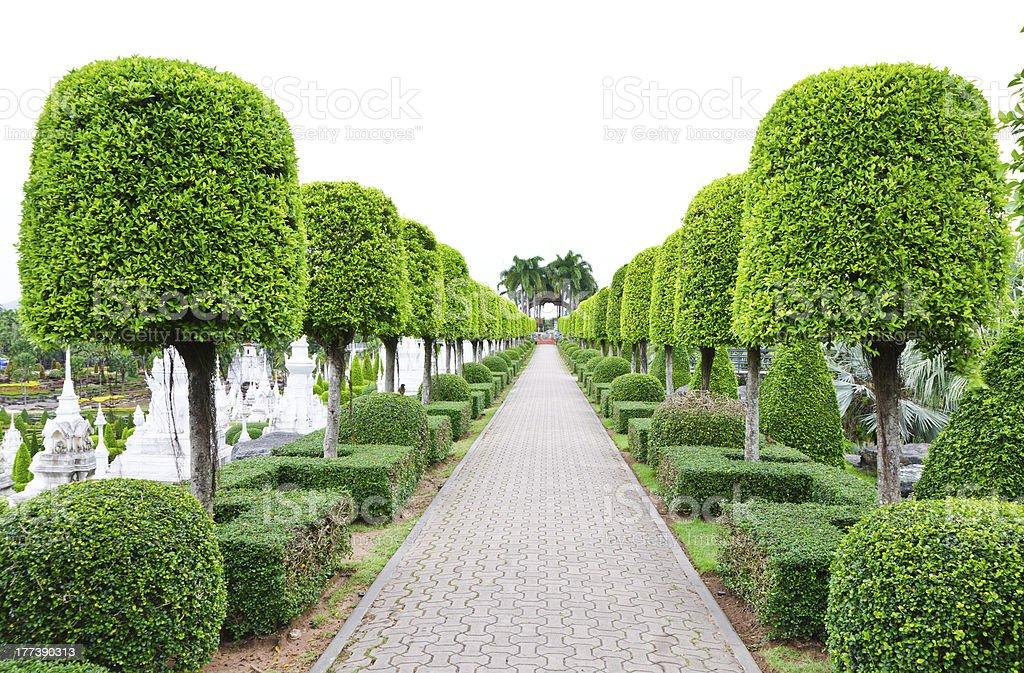 Outdoor landscape garden royalty-free stock photo