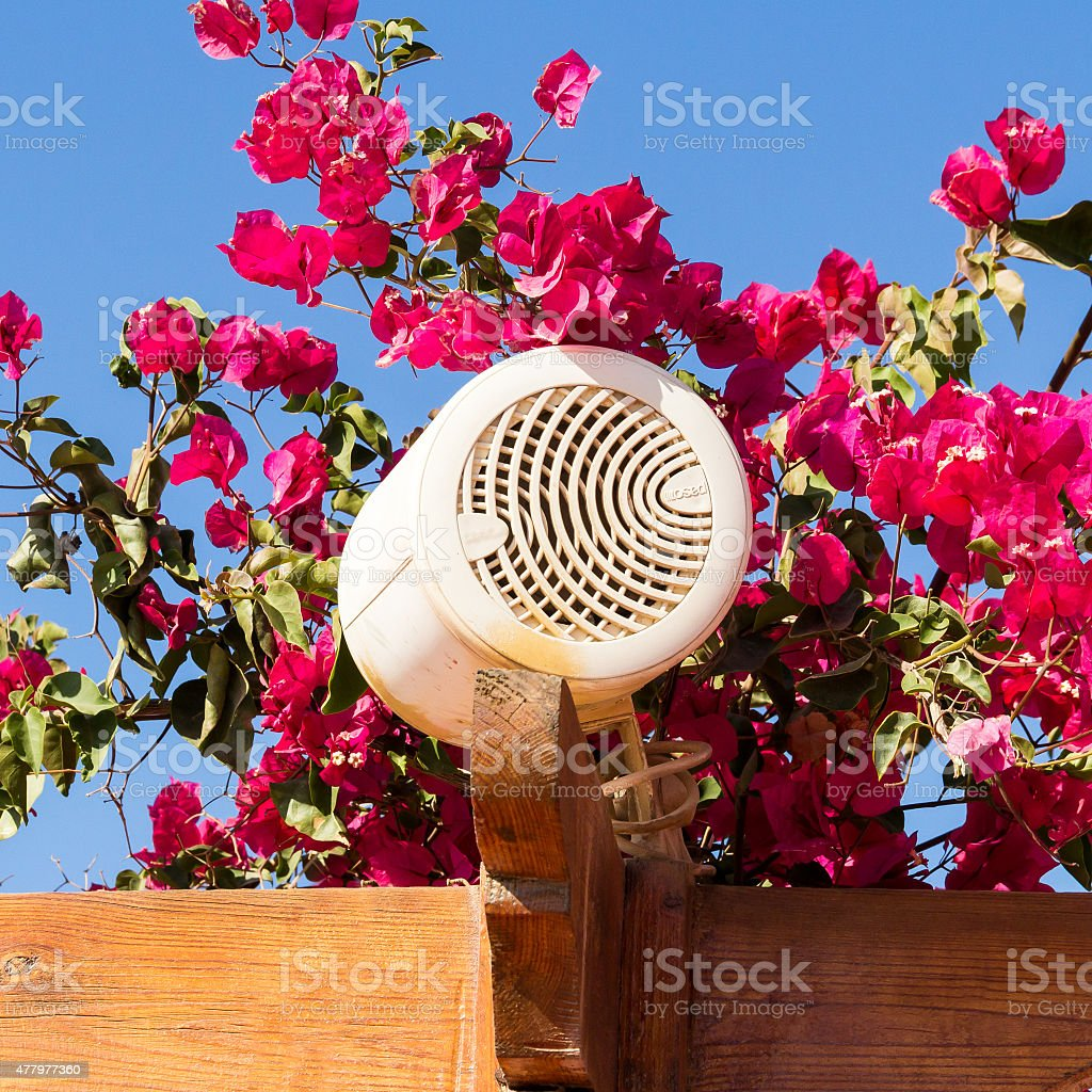 Outdoor loudspeaker hidden among flowers. stock photo