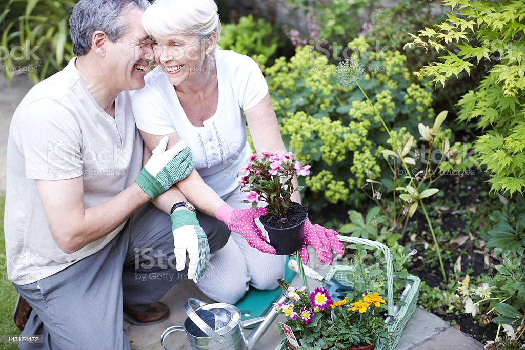 Outdoor love royalty-free stock photo